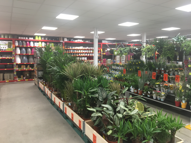 The store offers a good selection of keenly-priced houseplants and pots