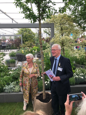 Chairman Robert Hillier presenting Dame Judi with the elm sapling