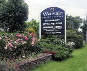 Wyevale Group now under Bank of Scotland control