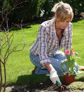 Gardeners took advantage of the warm weather in June
