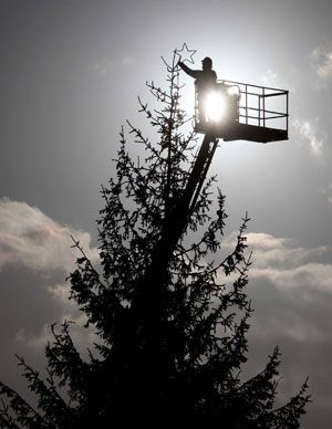 UK's biggest Christmas tree lights up Dobbies