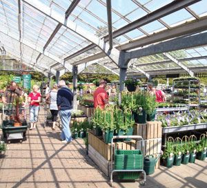 Woodcote Green Garden Centre enjoyed a busy Bank Holiday period