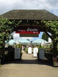 Shoots' three centres, including Cobham (pictured) will continue trading as normal for now
