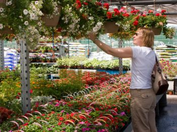 Sunshine brings out the garden centre shoppers in May