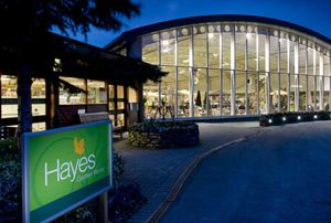 Garden centre md Thomas Hayes crashed his Porsche while drunk