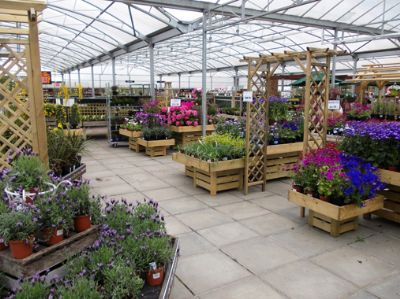 The plant area at Cherry Lane Beverley